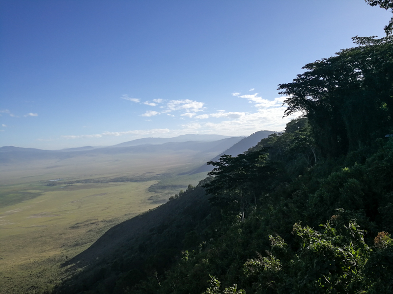 محمية نجورونجورو في صور